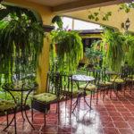 Hotel-Camelias-Antigua-Guatemala-garden-8